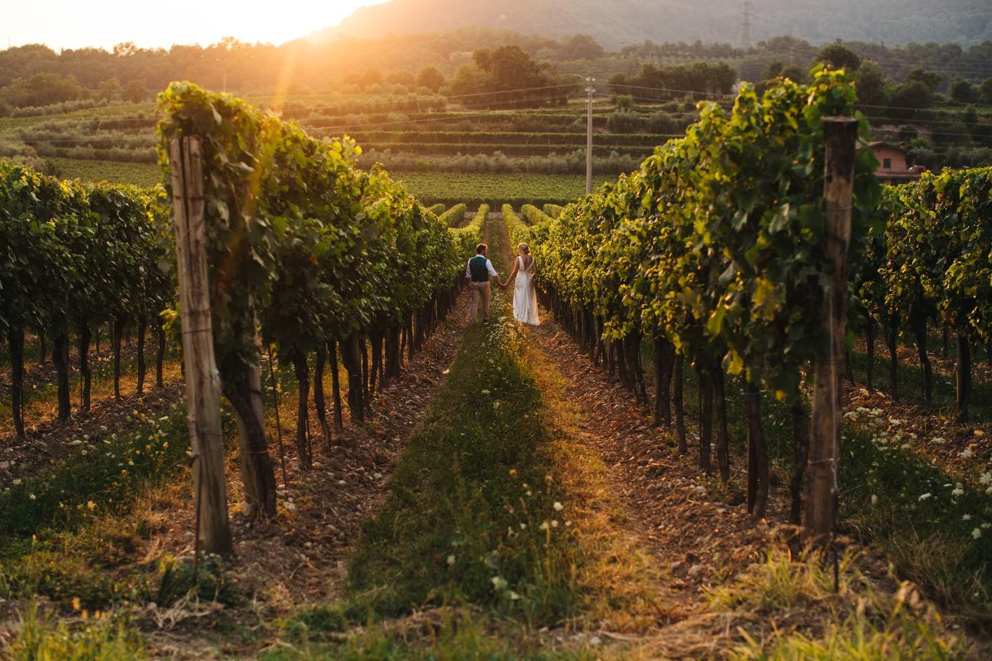 Solive vineyard wedding