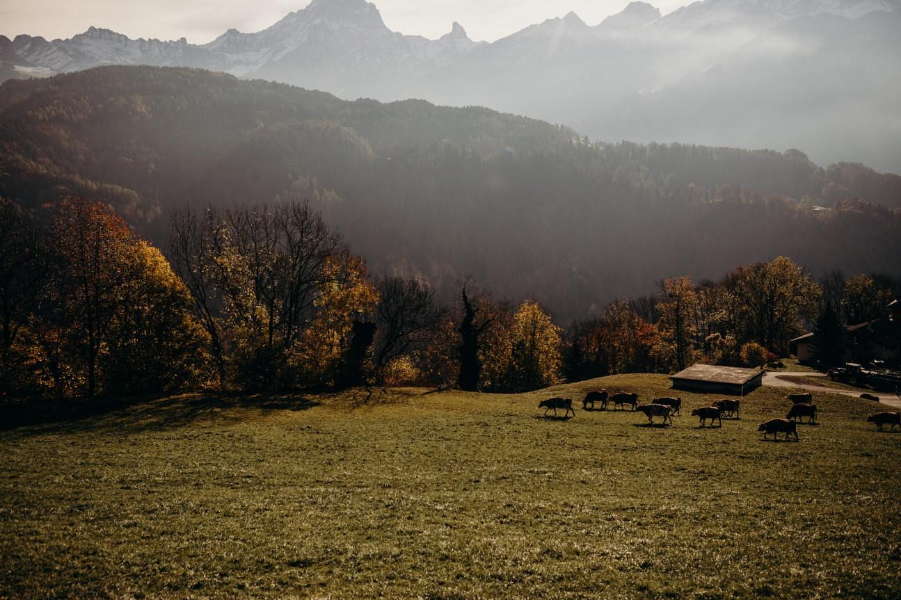 Swiss Alps Wedding Photography 002