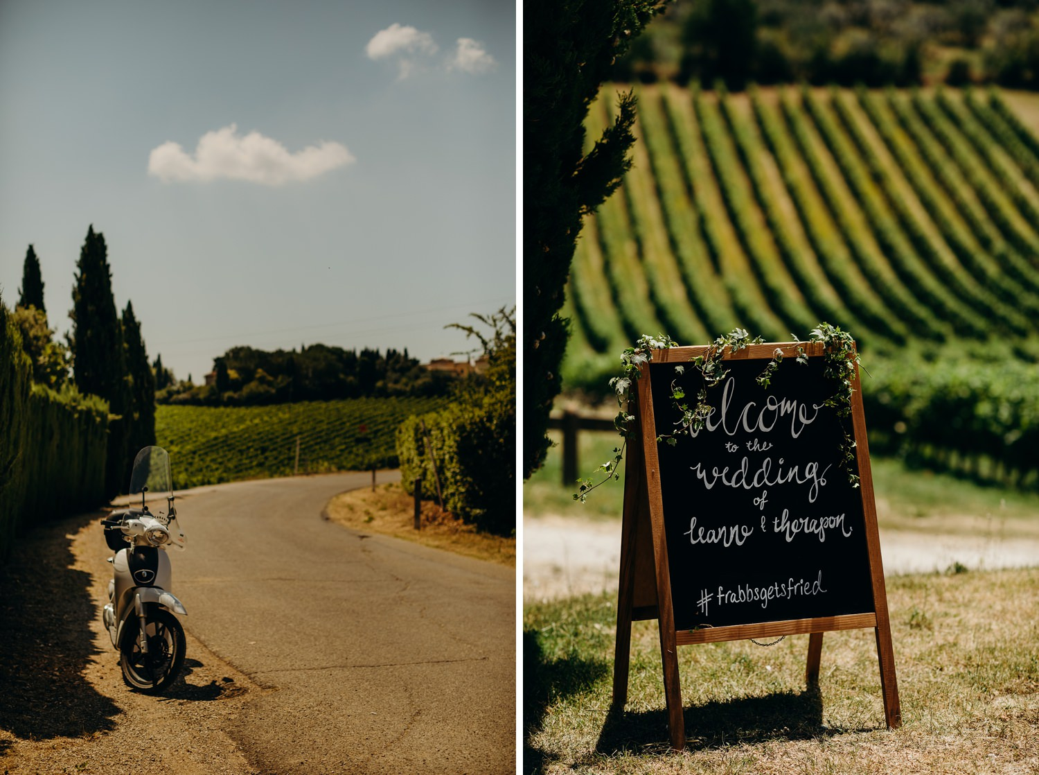 Wedding welcome sign with vineyard in background
